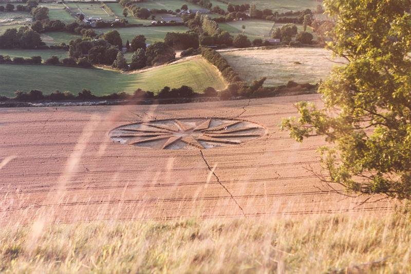 Kornkreis in Wiltshire, England