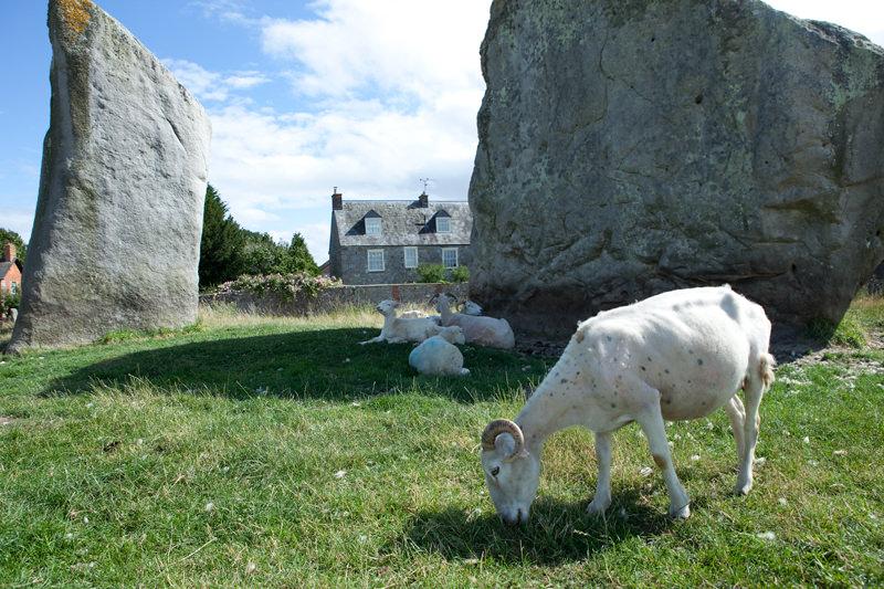 Steinkreis in England, Avebury