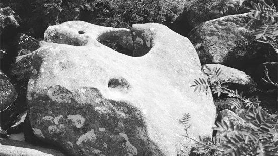 Der Feen Gulli von Dartmoor…