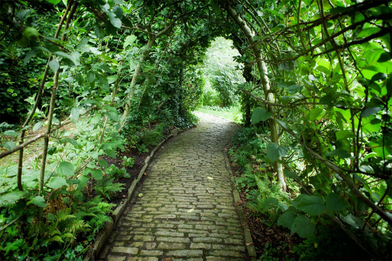 Chalice-Well-Garden-Glastonbury-1